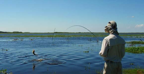 Pesca La Paz